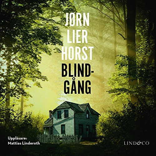 Blindgång cover art