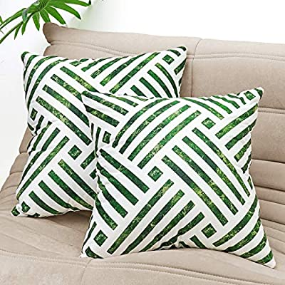 Crowned Decorative Throw Pillow Cases 2 Pack 18...