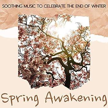 Spring Awakening: Soothing Music to Celebrate the End of Winter