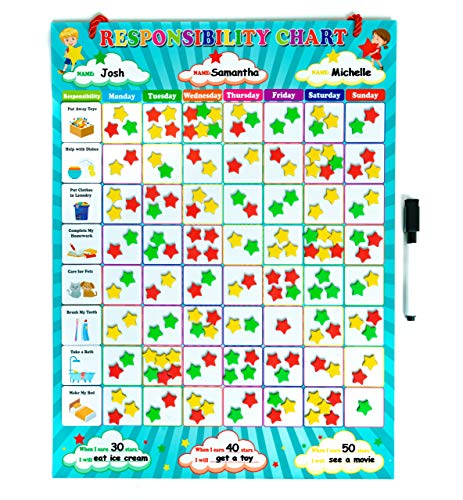 Magnetic Responsibility Chart for Kids | Reward Chart | 20 Magnetic Chores, 240 Magnetic Stars, Bag for Easy Magnet Storage! | Reward Chart for Multiple Kids |