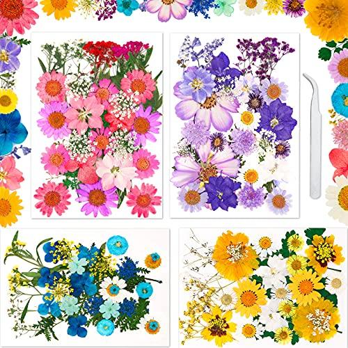 fiori secchi ikea