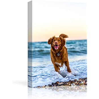 NWT Custom Canvas Prints with Your Photos for Pet/Animal, Personalized Canvas Pictures for Wall to Print Framed 10x8 inches