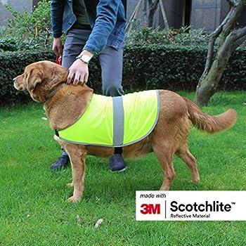 Salzmann 3M Manteau pour Chien Réfléchissant | Fabriqué avec 3M Scotchlite | Gilet de Sécurité pour Chien de Haute visibilité | Taille L