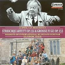 String Quartet No. 14 in C-Sharp Minor, Op. 131 (arr. for string orchestra): I. Adagio, ma non troppo e molto espressivo