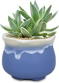Dahlia 3.9'' Inch Rustic Drip Glazed Ceramic Planter/Succulent Pot/Plant Pot, Blue (Renewed)