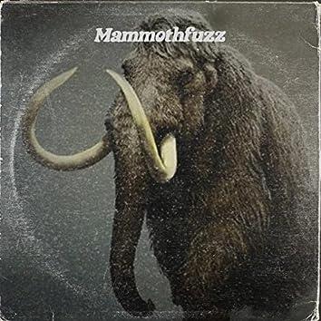 Mammothfuzz