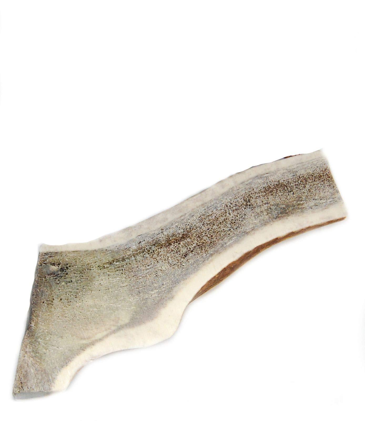 Split Antler Dog X Large inches