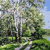 Digital Landscape Oil Painting Diy Summer Suit Oil Painting Canvas Hand-Painted Home Decoration 50X40cm