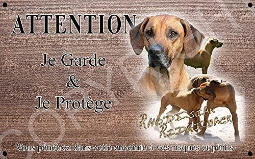 Pets-Easy.com Attention Chien de Garde personnalisée Rhodesian Ridgeback - pré perforée et vis comprises. De 30 cm à 15 cm…