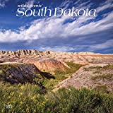 South Dakota Wild & Scenic 2022 12 x 12 Inch Monthly Square Wall Calendar, USA United States of America Midwest State Nature