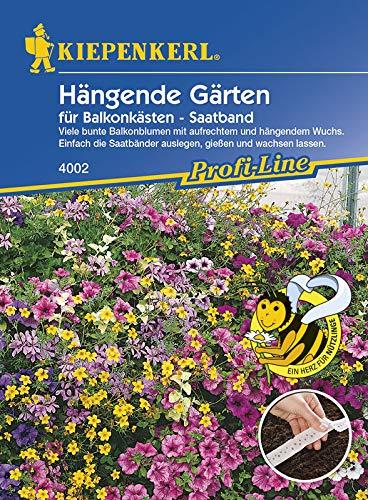 Hängende Gärten für Balkonkästen, Saatband, Mischungen einjähriger Sommerblumen von Kiepenkerl