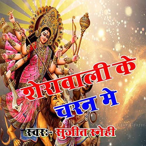 Sujit Snehi