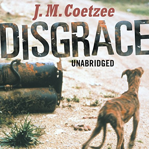Disgrace audiobook cover art
