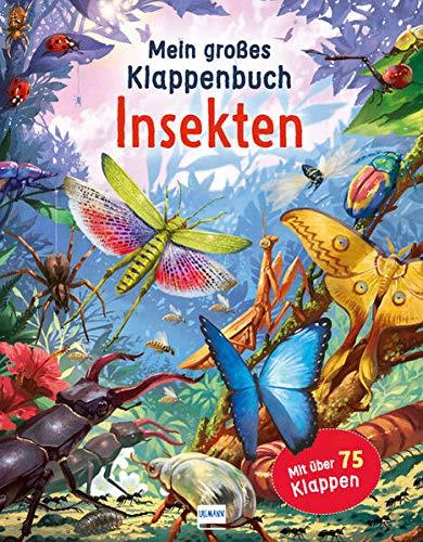 Mein großes Klappenbuch - Insekten: mit über 75 Klappen und spannenden Sachinformationen