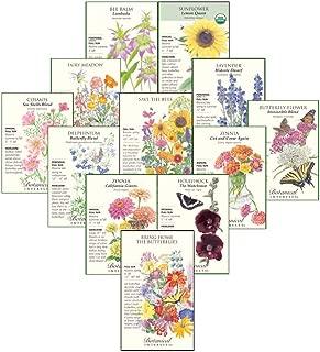 botanical seeds