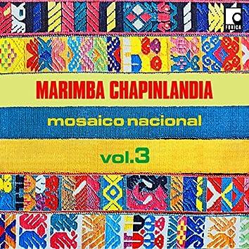 Mosaico Nacional Vol.3