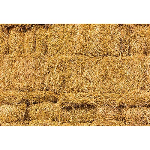 Haoyiyi 7x5ft Farm Haystack Backdrop Barn Photography Background Western Ranch Photos Newborn Baby Photography Cowboy Birthday Party Decoration Cowgirls Portraits Country Photo Props