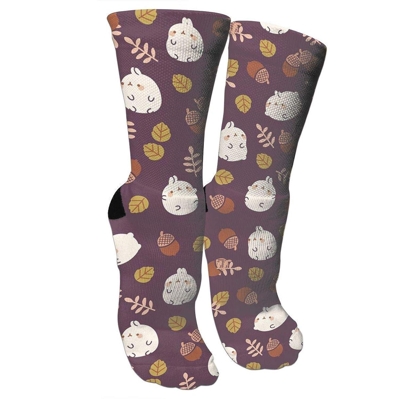 靴下 抗菌防臭 ソックス ラビットとピンクトンアスレチックスポーツソックス、旅行&フライトソックス、塗装アートファニーソックス30 cmロングソックス