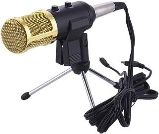 bm100 microphone