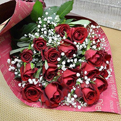 深紅バラとかすみ草の花束 20本 フラワーギフト 誕生日 結婚記念日 還暦祝い プレゼント 贈り物 敬老の日 クリスマス