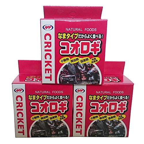 NPF コオロギ40g (コオロギ缶)×3個セット