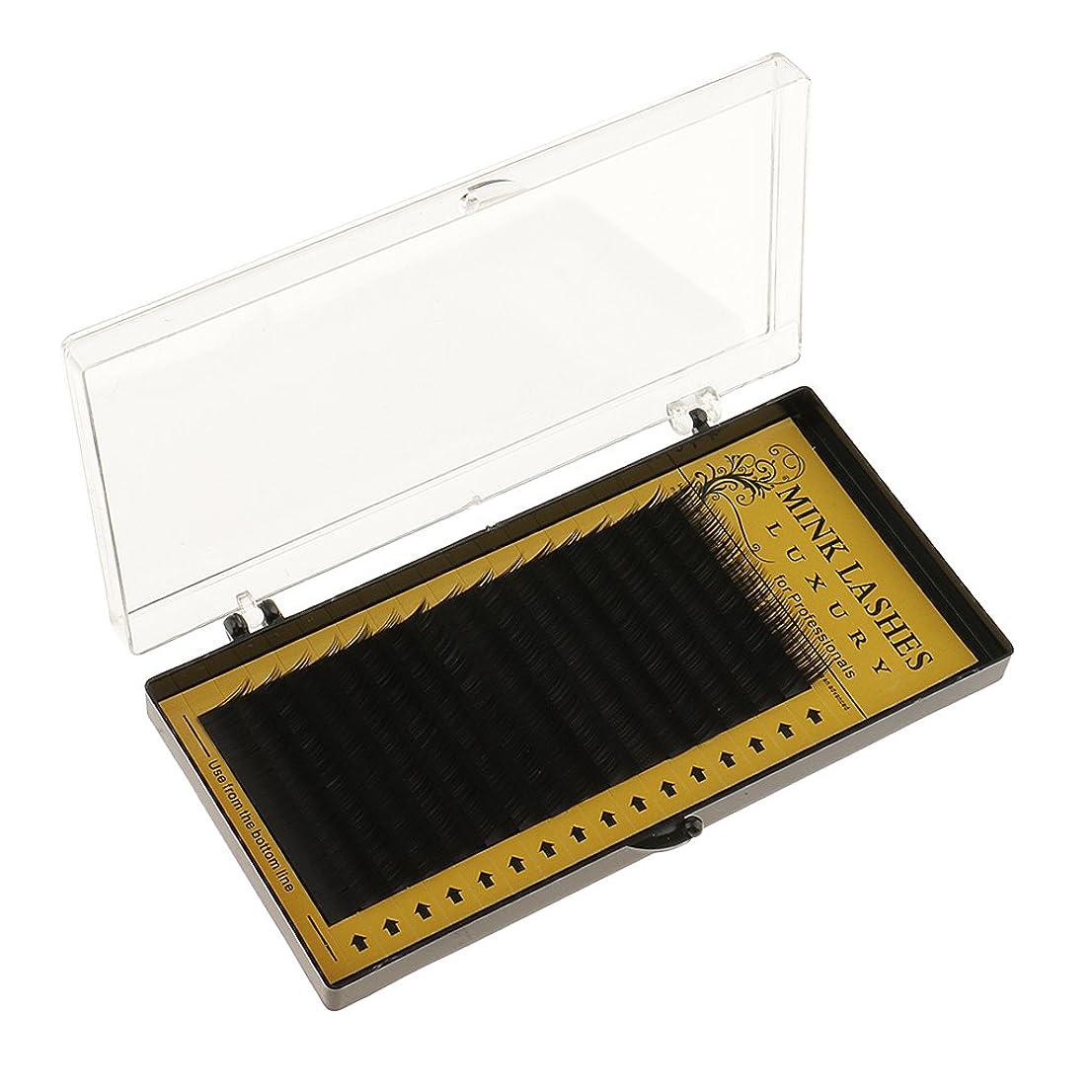 特権的ストライプ暴徒Baosity 全3サイズ 約8-12mm プロ 美容室 ナチュラル まつげエステ ファブリック つけまつげ まつげ拡張 延長 ソフト  - 10mm