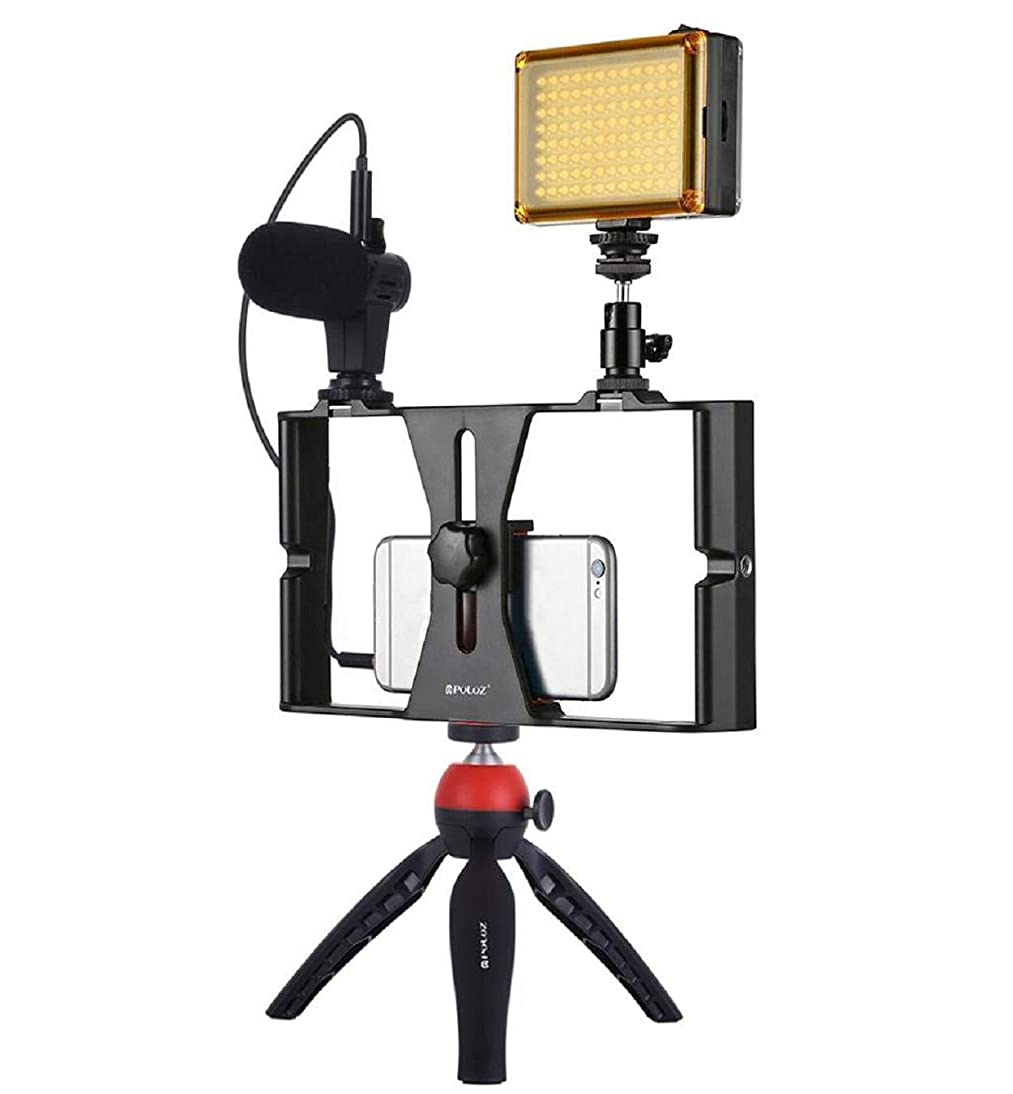 Lomsarsh Stent Stabilizer, Portable Universal Smartphone Video Rig Phone Video Stabilizer Grip Tripod Mount with Microphone and LED Lights for iPhone pndq642955673333