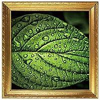 スーパーDIY・ECO ウォッシュ愛 WASH-I(R) ウォッシュアイ wash028 緑の葉 サイズ縦横45cm 商標登録第6298697号