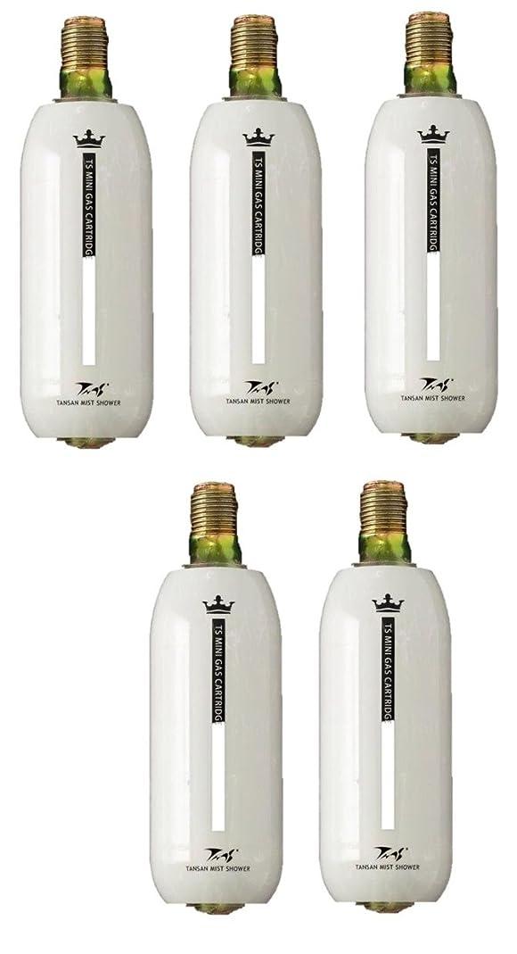 光沢のある冷蔵するビデオ炭酸ミストシャワー専用の炭酸ミニガスカートリッジ(1本:74g) (5本組)