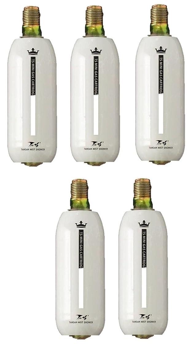 お客様指導する蒸発する炭酸ミストシャワー専用の炭酸ミニガスカートリッジ(1本:74g) (5本組)