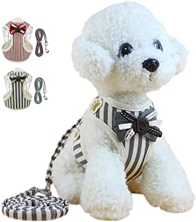 HALOViE Small Dog Harness with Leash, Fashionable Puppy Cat Striped Harness Breathable Soft Mesh for Small Medium Pet Doggy Doggie Kitten
