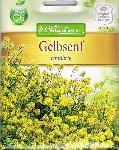 Chrestensen Gelbsenf Senf Gründünger