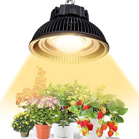 Rapid LED 75W CREE CXB3590 COB LED Grow Light Fixture 3000K