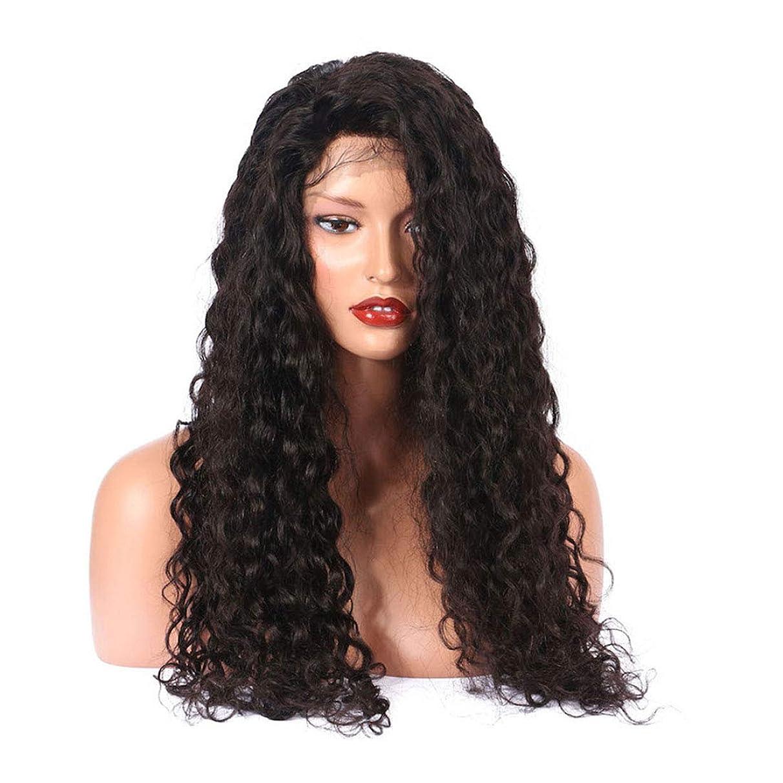 理想的にはメイドセンブランスFuku つけ毛 グルーレスレースフロントかつら女性のための長くナチュラルカーリー高密度合成レースかつら (色 : 黒)