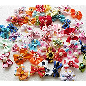 Carykon 40 Pack Pet Hair Bow with Rubber Bands for Yorkie Small Dogs- Assorted Colors