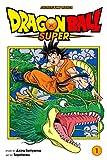 Dragon Ball Super, Vol. 1: Warriors From Universe 6 (English Edition)
