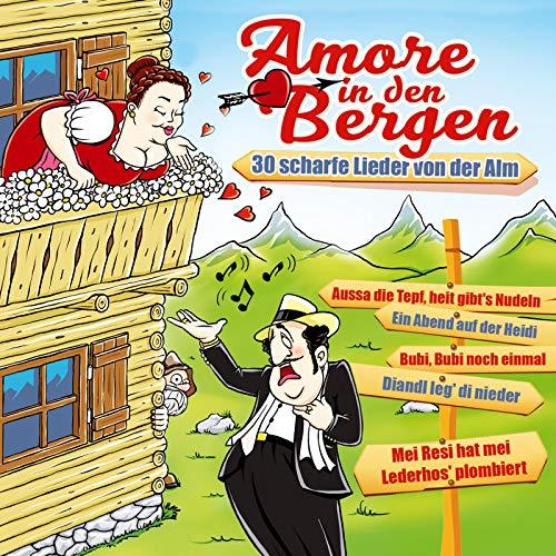 Schleifer-Medley: Der Bumsti / Der geile Florian / Heladi ladi lo (Scheißelied) / Die alten Rittersleut / Lieschen Lieschen