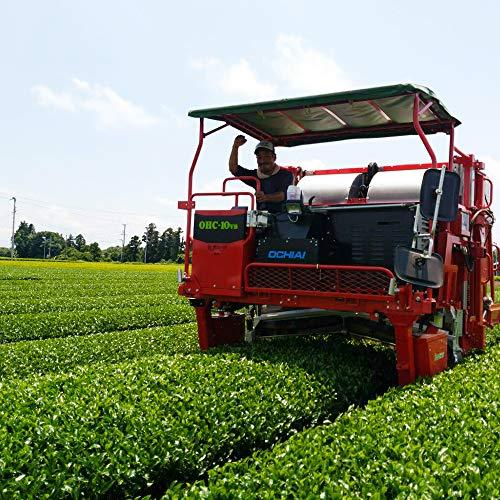2021年度産 静岡深蒸し新茶 大地の詩 特選荒茶旬 100g 荒畑園の原点 荒茶 茶農家のまかない茶 本茶 芽茶 茎茶 粉茶