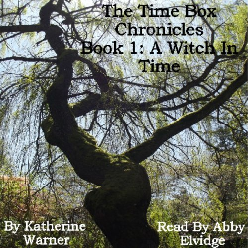 Couverture de A Witch In Time