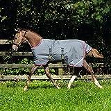 AMIGO Foal Turnout 200g