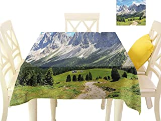 WilliamsDecor Table Cover Mountain,Pathway to Forest Alps Dining Table Cover W 70