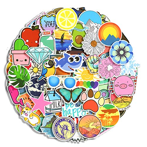 100pcs Random Stickers Funny Graffiti Decals Sticker Pack,Durable Vinyl Stickers for Flask, Laptop,Water Bottles,Skateboard,Luggage,Bicycle