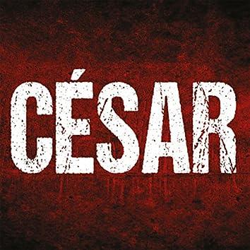 César Leitão
