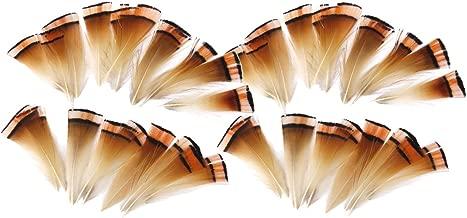 JYSM 10 Pcs Effrayer Plumes daigle Naturelles 15-20 CM 6-8Plumes De Faisan pour Artisanat Fabrication de Bijoux D/écoration De Mariage Plumas