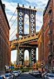 Educa Borrás - 1000 Puente de Manhattan, Nueva York, Puzzle (17100)