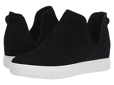 STEVEN NEW YORK Canaresp (Black Suede) Women