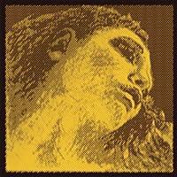 Pirastro Evah Pirazzi Gold Violin String Set - Silver Wound G - Ball E - Medium Gauge [並行輸入品]