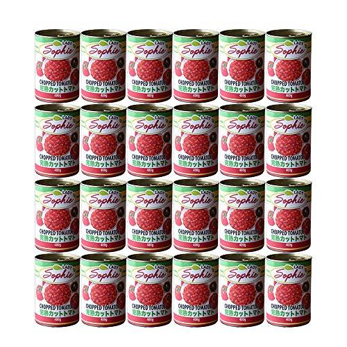 イタリア産 完熟 トマト缶 カットトマト 【24缶セット】