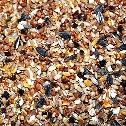 Kampol 10 kg DZP Wildvogelmischung