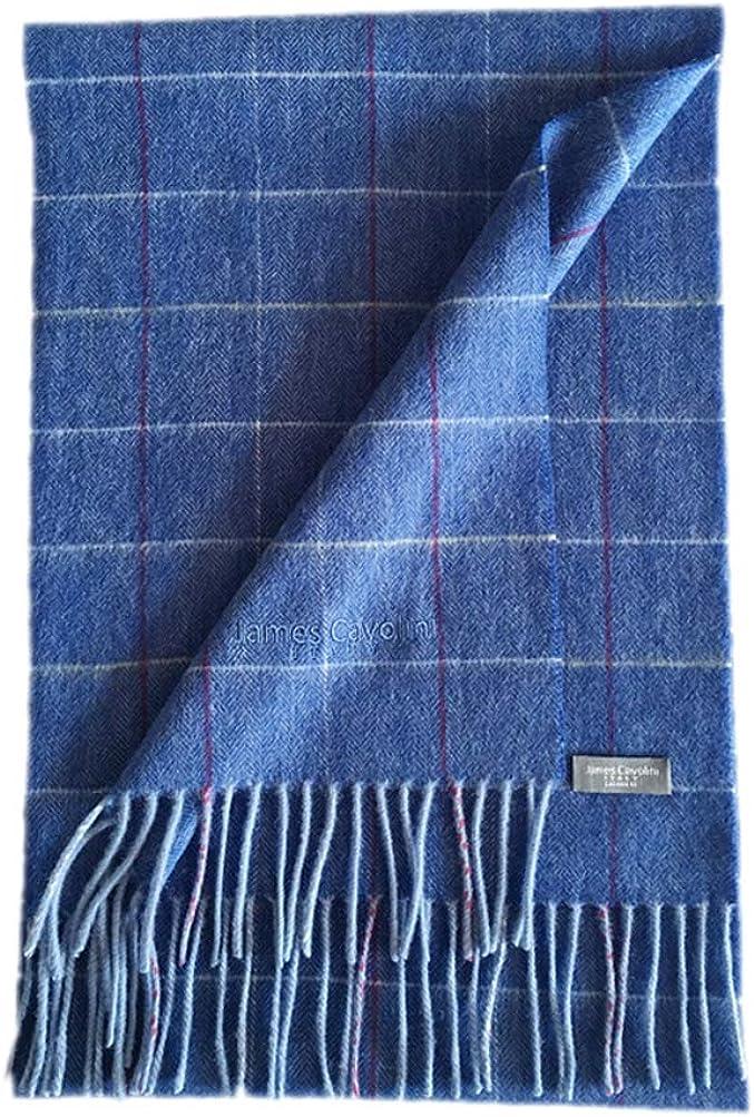James Cavolini Italy Men's Cashmere Wool Plaid Blue Scarf